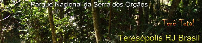 Fauna, flora e grande biodiversidade. A natureza e sua força em Teresópolis RJ