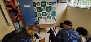 Cia de Operações com Cães da Guarda Civil de Teresópolis